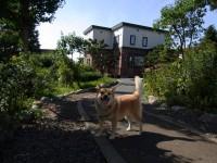 庭の向こうの茶色の建物が 大家さんの家です。