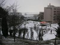 雪の薬草園と校舎・わたなべ山から