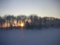 雪原の朝焼け