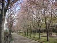 札幌市中央区・永山記念公園