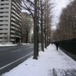 すっかり雪の溶けた車道と雪の歩道