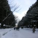 神宮を背に表参道