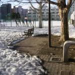 中央区の近くの公園