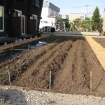 菜園づくりの始まり