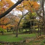 知事公邸の庭