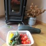 Yさんの菜園の収穫物