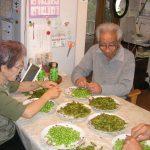 2010年9月.枝豆もぎ