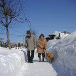 2010年2月.雪まつりへ