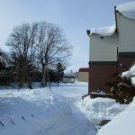 家の南側は雪解けが早い