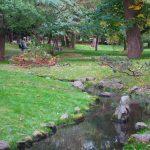 秋の水・水澄む
