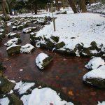 凍てついた小川