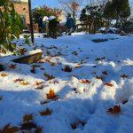 落葉の上にどっと雪